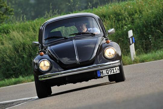 Memminger-Käfer 1303