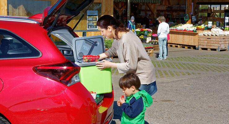 Auto Kühlschrank Mit Akku : 8 kühlboxen im test auto motor und sport