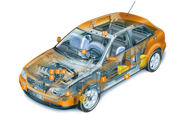 Audi A3 1.9 TDI, Schwachstellen, Igelbild
