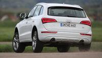 Audi Q5 3.0 TDI Clean Diesel, Heckansicht