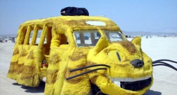 Bild des Tages, Crazy car picture, verrückte Autobilder, lustige Autobilder