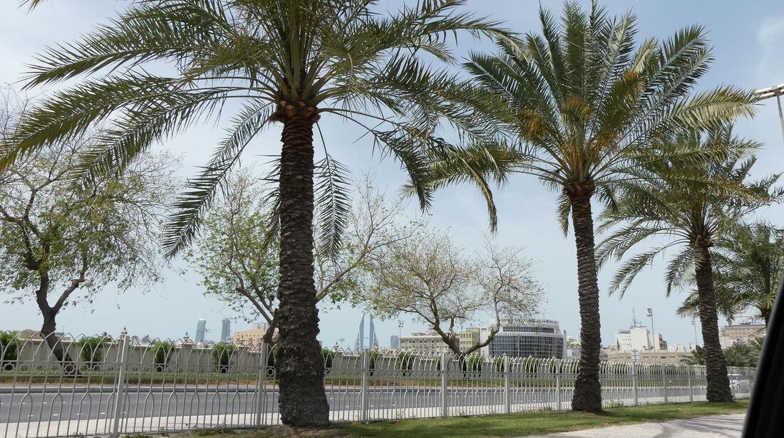 F1 Tagebuch - GP Bahrain 2017 - Formel 1