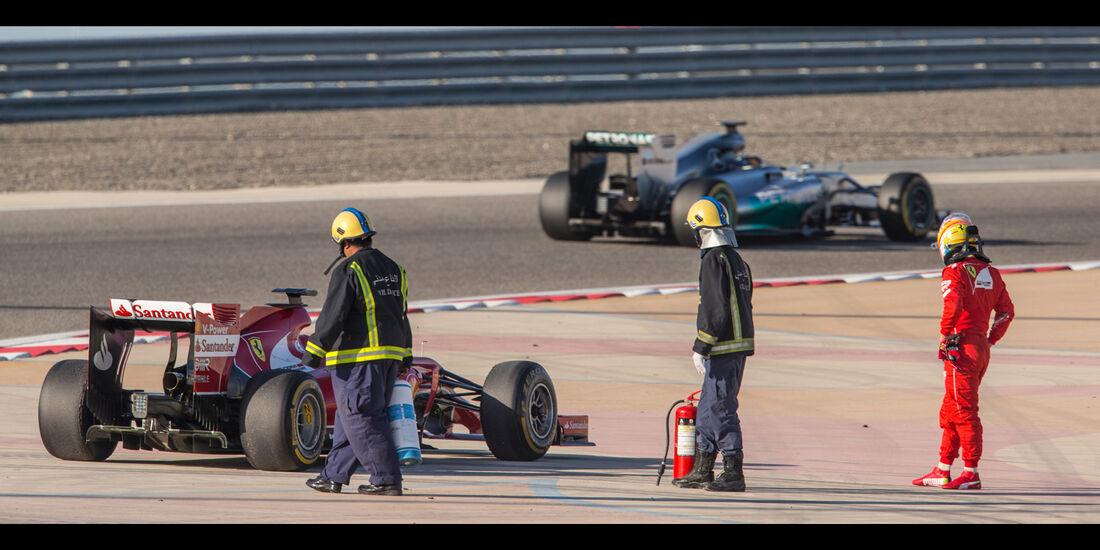 Fernando Alonso - Danis Bilderkiste - Bahrain-Test 2014