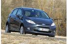 Ford Fiesta 1.4., Frontansicht