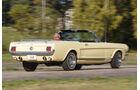 Ford Mustang V8, Heckansicht