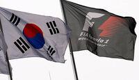 Formel 1 GP Korea 2010 Flaggen