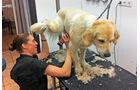 Handstaubsauger, Hundefrisör