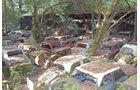 Historischer Autofriedhof Grübetal