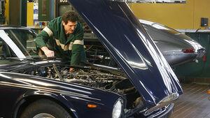 Jaguar XJ 12, Daimler Double Six