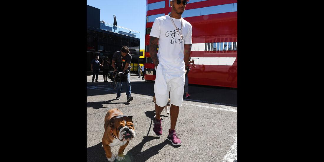 Lewis Hamilton - Mercedes - Formel 1 - GP Belgien - Spa-Francorchamps - 25. August 2016
