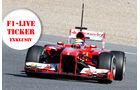 Live-Ticker 2013 F1 Jerez Test