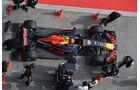 Max Verstappen - Red Bull -  GP China 2017 - Qualifying - 8.4.2017