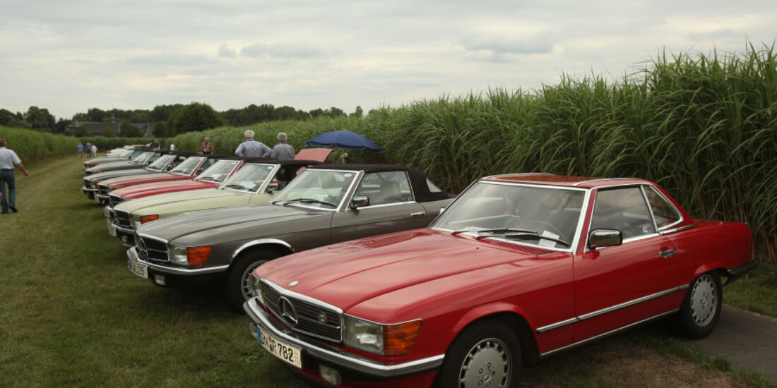 Mercedes Benz SL-Club auf dem Miscanthusfeld