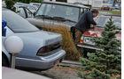 Nissan Maxima 3.0 V6, Heck, Alf Cremers