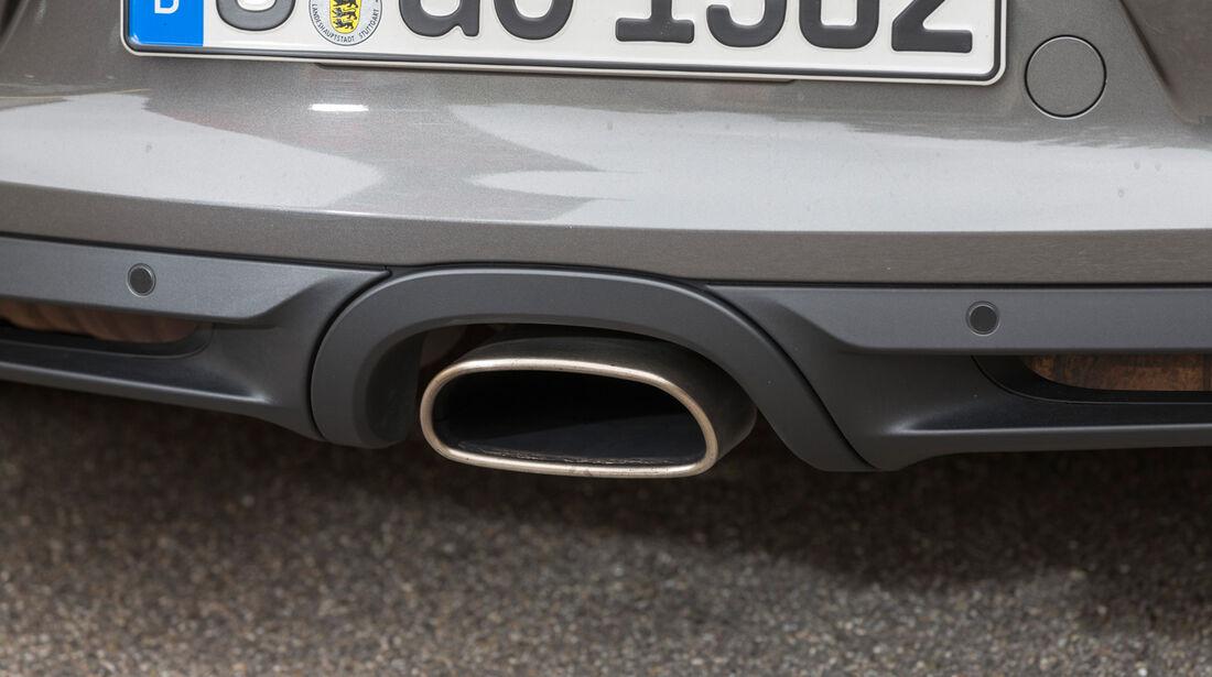 Porsche Cayman, Auspuff, Endrohr