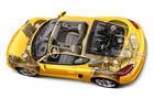 Porsche Cayman S, Grafik, Igelbild