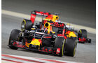 Red Bull - GP Bahrain 2016