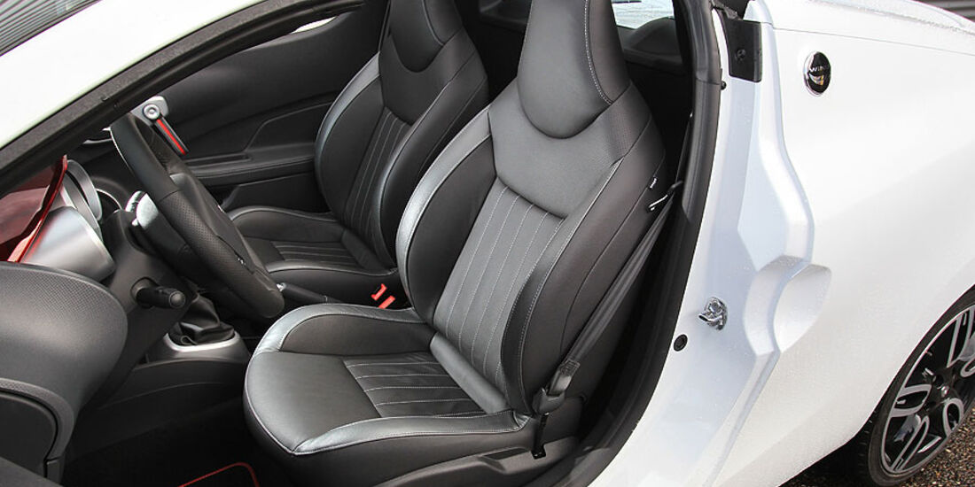 Renault Wind 1.6 16V, Fahrersitz