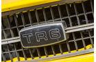 Triumph TR 6, Kühlergrill