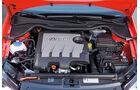 VW 1.6 TDI Motor, 2009