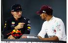 Verstappen & Hamilton - GP Singapur 2018